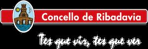 Logo FVRibeiro 53